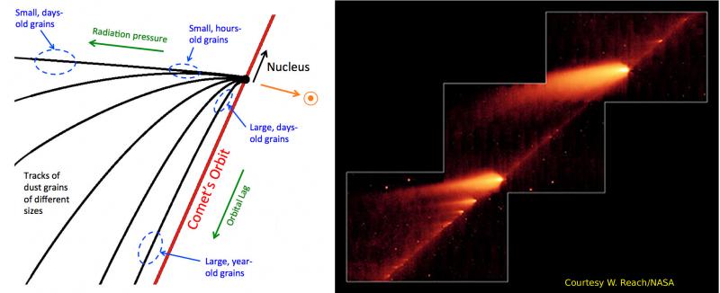 Schema di una coda cometaria