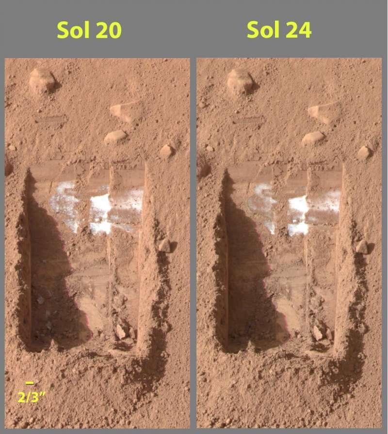 Phoenix ghiaccio sotto la superficie di Marte