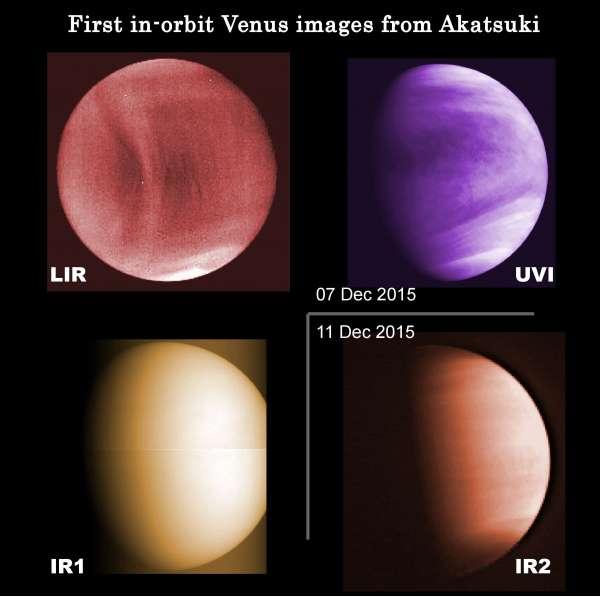 Venere ripresa dalle quattro fotocamere di Akatsuki