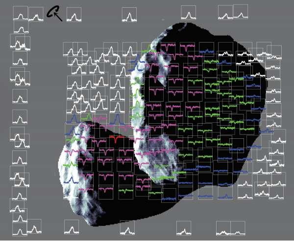 Miro - spettri della cometa 67P