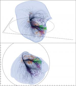 Superammasso Laniakea - Credit: SDvision interactive visualization software by DP at CEA/Saclay, France