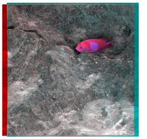 OPPORTUNITY Sol 1045 mic anaglyph fish