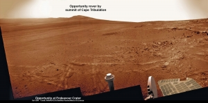 Opportunity - Cape Tribulation